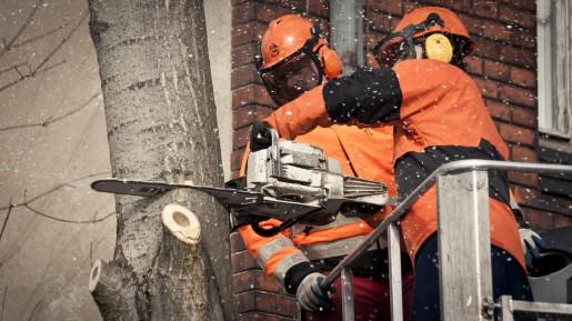 Baum fällt! – THW hilft im Cabuwazi Kinderzirkus