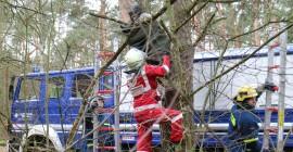 Ein verletzter Passagier wird auf dem Ast eines Baumes sitzend vorgefunden. Während der Sanitäter den Verletzten anspricht, leiten die THW-Helfer die Rettung vom Baum ein. Quelle: THW/Joachim Schwemmer